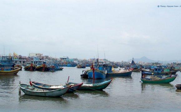 Vietnam My CountryVN