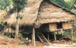 Muong cultural minority's stilt home
