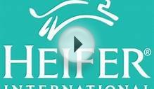 Heifer International | Charity Ending Hunger And Poverty