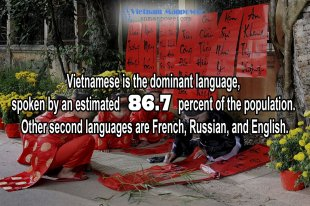 vietnamese-languages